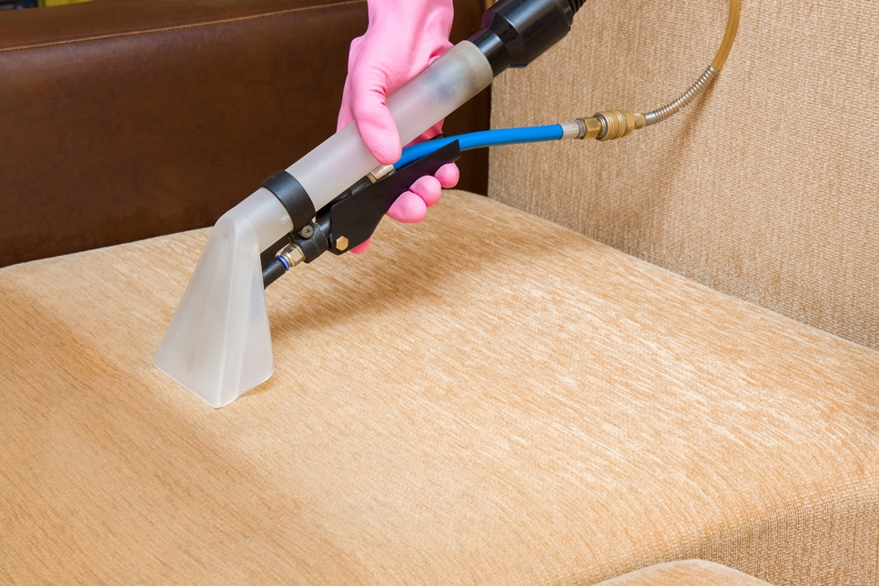 Cleaning and sanitizing a couch